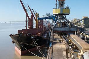 Bulk Cargo Szczecin